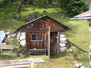 Wild experience in the Dolomites, Pieve di Cadore