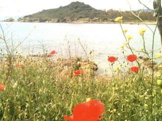 Graziosa villetta in oasi protetta Capo Ferrato.