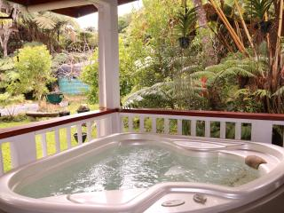 Alas Del Kealoha 3BR/2BA in Volcano Hot Tub and free Wi-Fi, Mountain View
