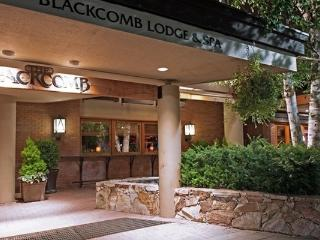 Whistler Blackcomb Lodge Ideally Located Studio Suite