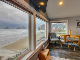 Oceanfront, dog friendly, newly remodeled - all the best!, Oceanside