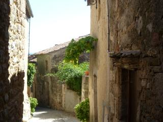 2 bed House in The Pretty Village Of Caunes., Caunes-Minervois
