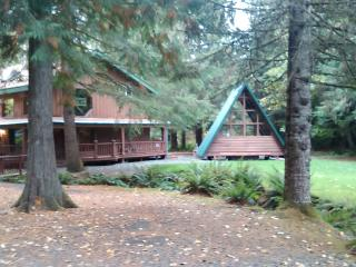 Buchanan's Bunkhouse & Hot Tub House!@ Park Ent.