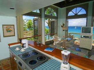 Suite 8c - Gallows Point Resort Oceanfront, Cruz Bay