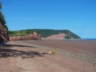 Blomidon Beach at low tide.