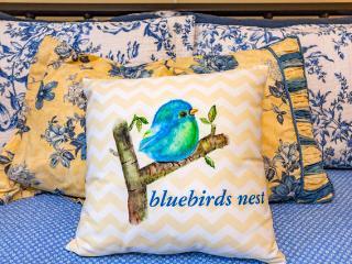 """Bluebirds nest"" - POOL/GYM, Nashville"