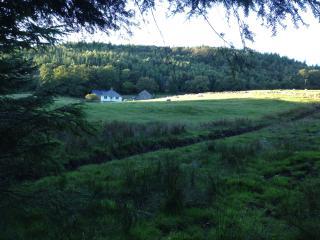 Modern Eco House, Coed Y Brenin, Dolgellau, Wales, Llanfachreth