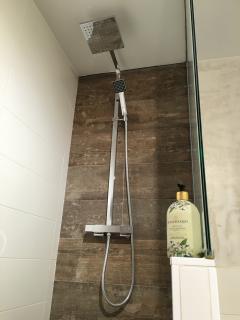 Ducha en baño principal