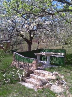 Under the cherry-tree..
