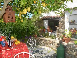 Sunflower Cottage Rural Portugal