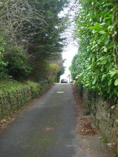 Driveway from Ballyman Road