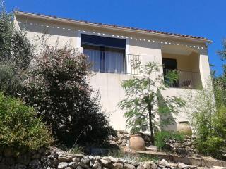 maison avec jardin dans village typique corse, Feliceto