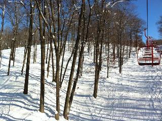 Ski In Ski Out!!!!, Harbor Springs