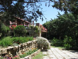 Casa Vacanza rustica immersa nel verde