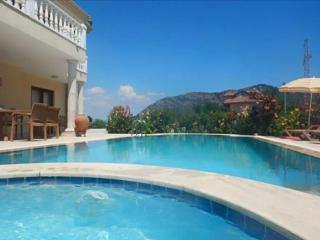 Villa Yaz Jacuzzi and pool