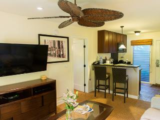 Aina Nalu D106  10% off the nightly rate 8/1-8/31, Lahaina