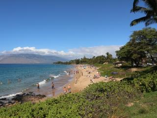 Ocean View Condo in Kihei (Kamaole Beach Royale)