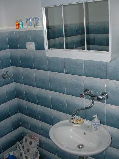 A1(8): bathroom with toilet