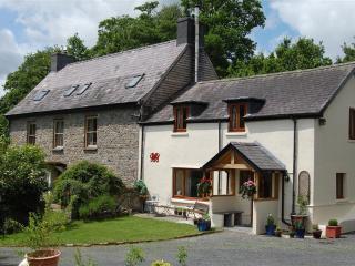 Basel Cottage (BASEL), Llandovery