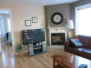 Condo 4 1/2 Furnished From A-ZZZZ For Rent., Laval