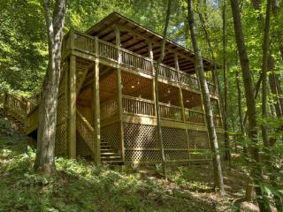 Lil' Beaver- Blue Ridge waterfront cabin rental