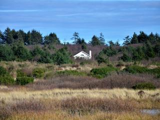 Pacific Pearl-A Private & Serene Beach Front Home, Ocean Shores