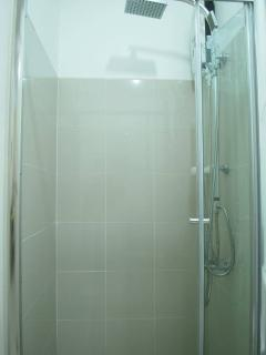 The shower area with rainfall shower head and quick-heating water heater.