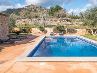 Huge finca of 4 houses with pool and mountain view