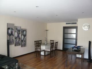 Magnifique Appartement 110m2 -centre-zone piétonne