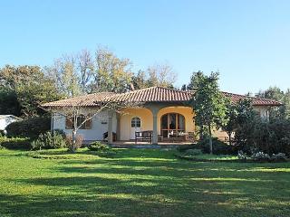 San Bartolo, San Vincenzo