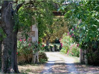 MAS DU FIEU, St-Rémy-de-Provence