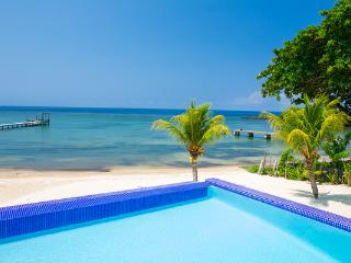 PRIVATE BEACH - HUGE INFINITY POOL - STUNNING REEF, Coxen Hole
