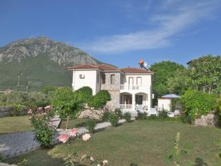 3 bedroom detached villa with private pool, Yesiluzumlu