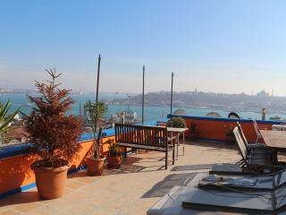 Huge Shared Terrace&Amazing Panaromic View @Galata