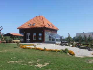 Lituania Affitti Vacanze in Utena County, Anyksciai
