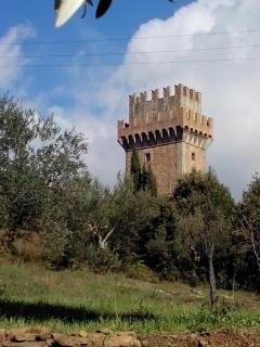 Palazzone tower from our garden