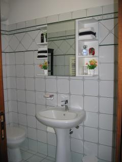 Guest bathroom has heated towel warmer & 220 hair curling iron and dryer