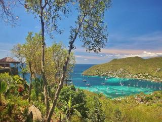*PALM*  Bequia's Finest Boutique 5* Properties, Richmond