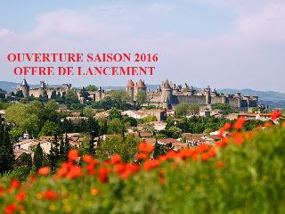 Le Pavillon de la Cité et son jardin (appart. F3), Carcassonne