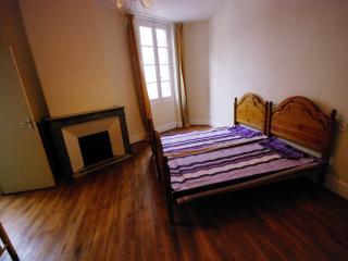 Family Room in Spacious Apartment in ALBI centre, Albi
