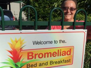 Bromeliad B&B, Darwin