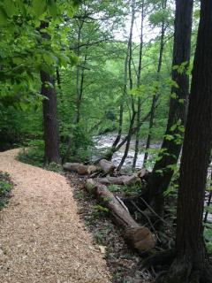 Hiking path by the stream