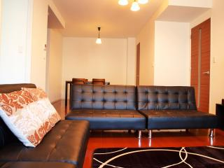 Luxury Apt Close to Namba Station!, Osaka