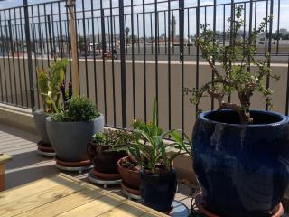 A Rooftop in Yafo, Tel Aviv