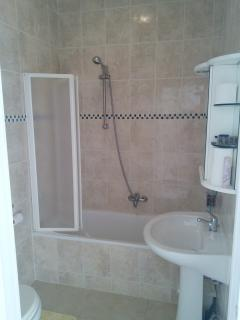 Main bathroom with shower over tub.
