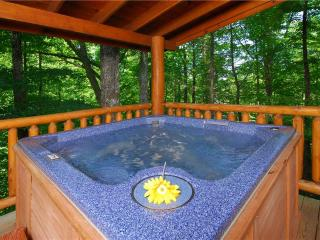 An Elegant Escape, Sevierville