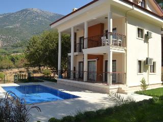 Dream Villa A - 4 bedroom Villa with private pool, Ovacik