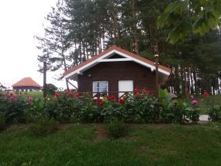 Lituania Affitti Mensili in Utena County, Anyksciai