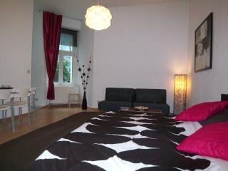 Spacious & quiet apartment near famous Mauerpark