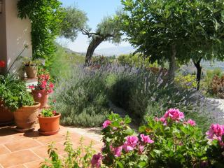 Spacious Country Villa with Pool, Álora
